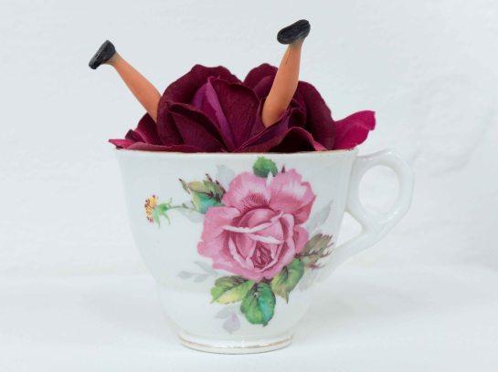 Rosy Lea by Kate Murdoch © Fernando Leon-Guiu